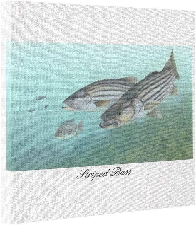 Showmore Abstract Art Canvas Striped Bass Photo Printed On Canvas Posters Prints