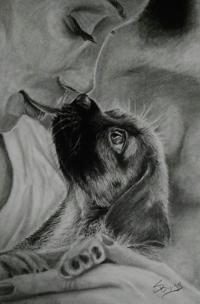 Amazon com pencil sketch drawing ofunconditional love charcoal and graphite drawing of puppy and owner handmade