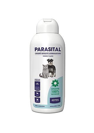 Parasital Champú Antiparasitario para Perro y Gato, 400 Ml: Amazon.es: Productos para mascotas