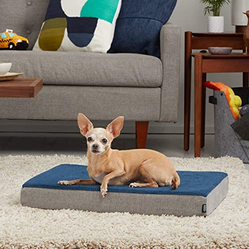 BarkBox Orthopedic Dog Bed Review