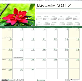 """product image for House of Doolittle 2017 Monthly Wall Calendar, Earthscapes Flowers, 12 x 12"""" (HOD326-17)"""