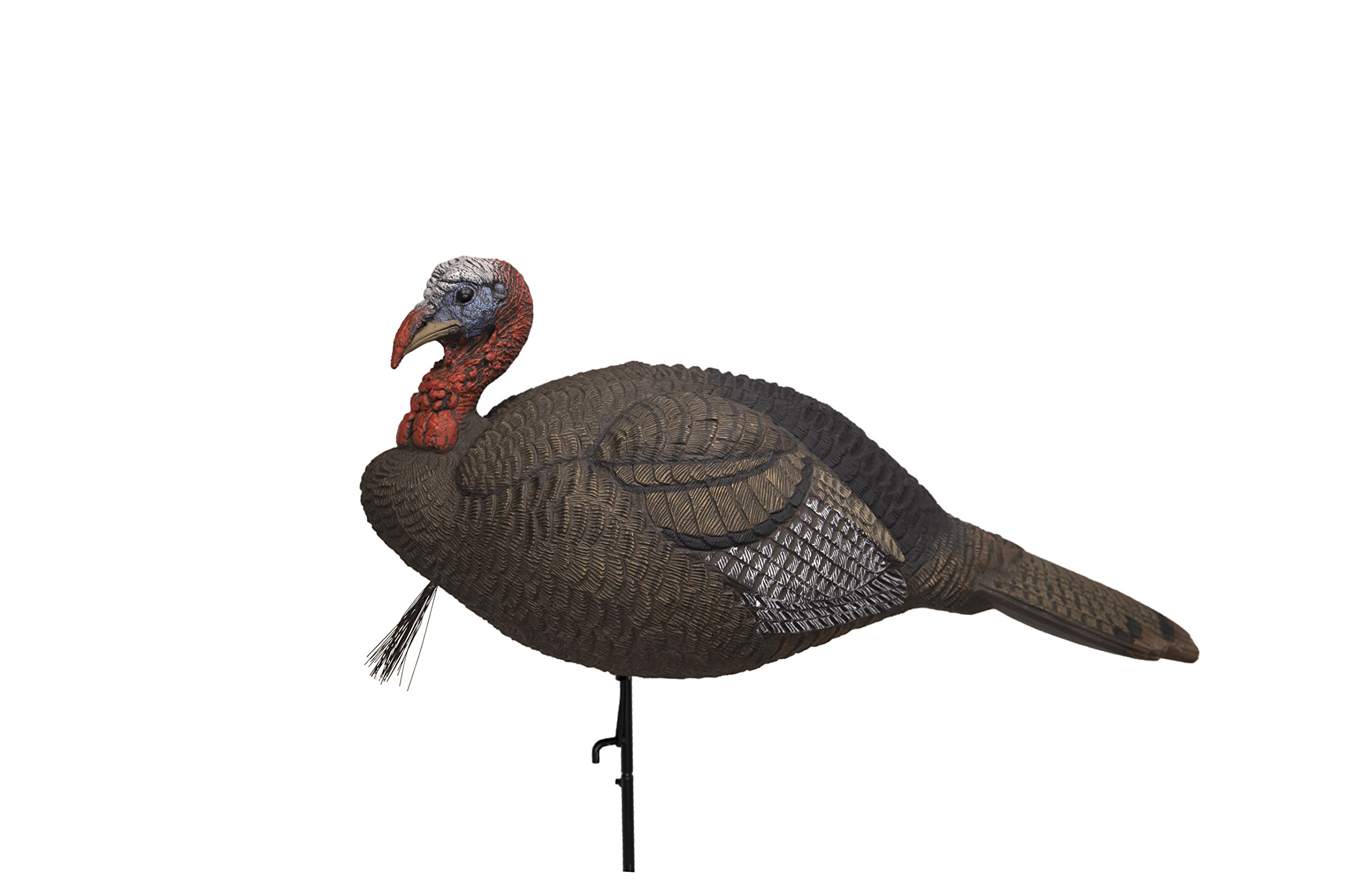 Lucky Duck Lucky HD Collapsible Jake Turkey Jake Decoy by Lucky Duck