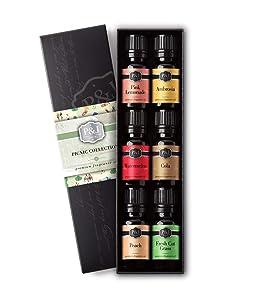 Picnic Set of 6 Fragrance Oils - Premium Grade Scented Oil - 10ml - Pink Lemonade, Ambrosia, Watermelon, Cola, Peach, Fresh Cut Grass