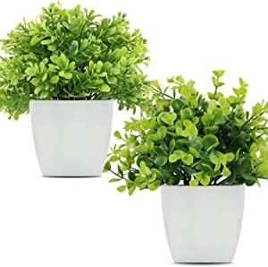 LELEE Artificial Potted Plants Mini Fake Plants, Small Eucalyptus Potted Faux Decorative Grass Plant with Black Plastic Pot for Home Decor, Indoor, Office, Desk, Table Decoration