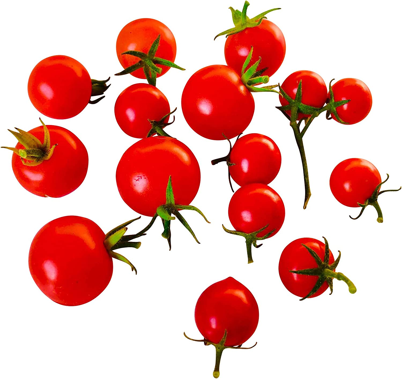 Tomate miel/Mexican Honey Tomato 10 Semillas By Samenchilishop ...