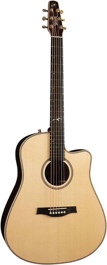 Seagull Artist Studio CW Element · Guitarra acústica: Amazon.es ...