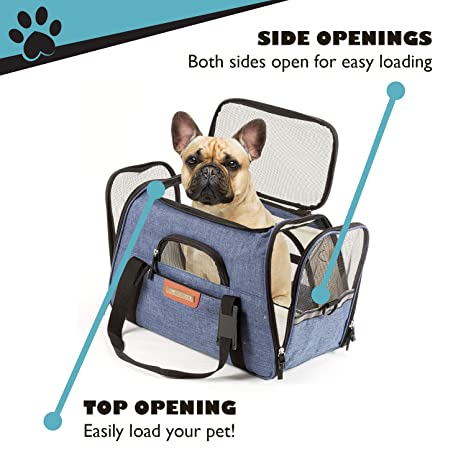 Amazon.com : Pawfect Pets Airline Approved Pet Carrier Soft-Sided Cat Carrier and Dog Carrier for Small Dogs and Cats, Fits Underneath Airplane Seat.