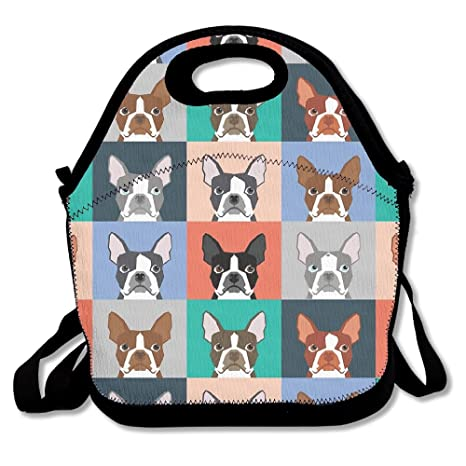 dasenco Boston Terriers Pop Art 100% poliéster cremallera portátil bolsa de almuerzo Picnic bolso impermeable contenedor termo para comida escuela ...
