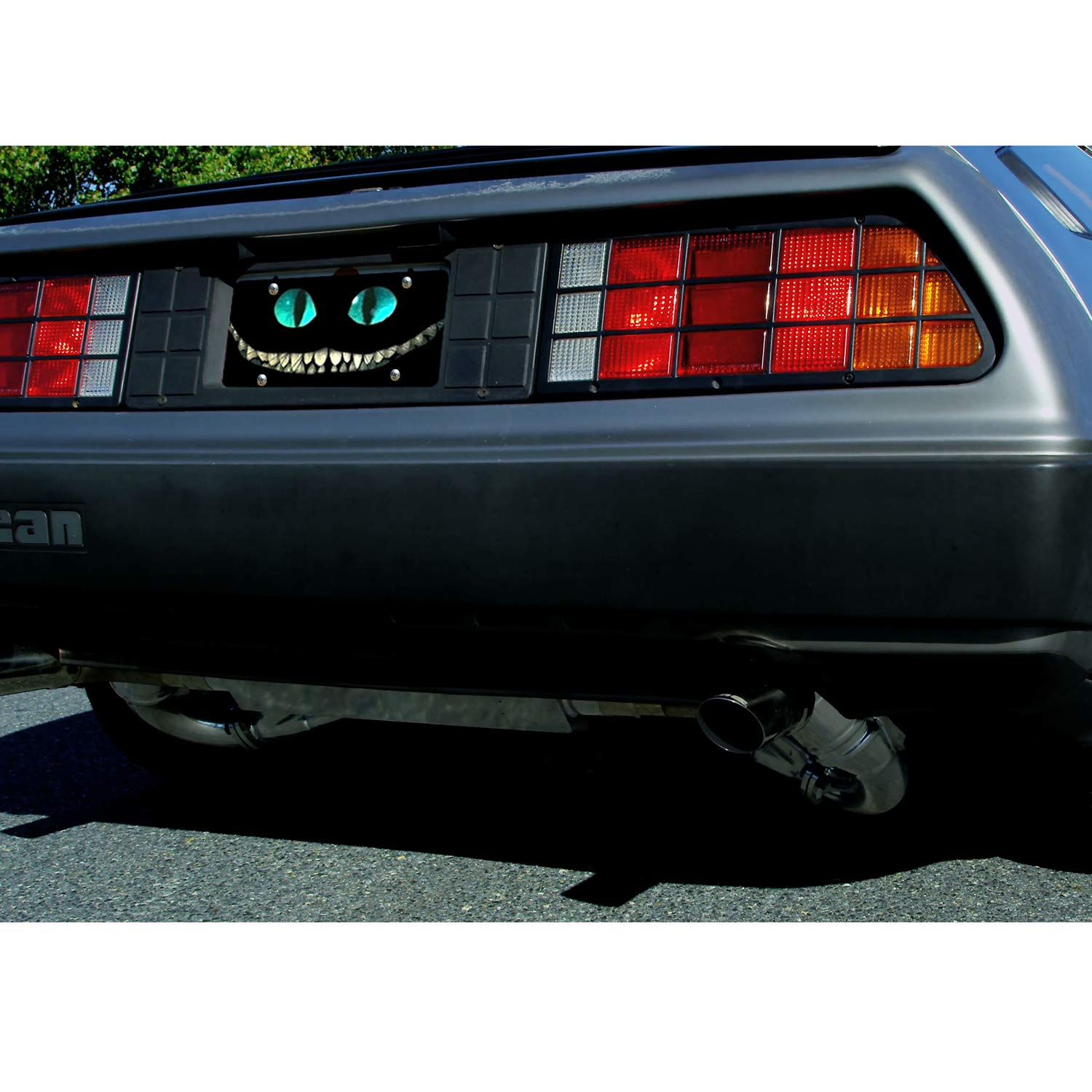 WOHR High Gloss Blinking-Cheshire Cat Smile Face Auto Tag Sign Car Tag Decor Metal License Plates for Front of Car//Truck