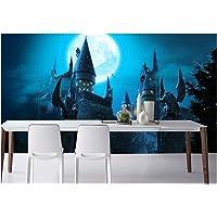 Harry Potter Behang, Castle Tapestry Photo, for De Decoratie Van De Woonkamer Slaapkamer (Color : 4, Size : 150 * 105cm)