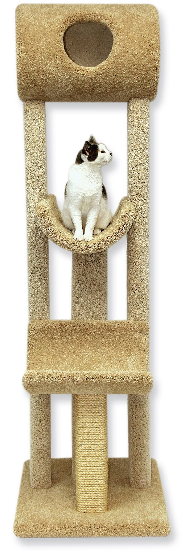 Beatrise Pet Products Kitty's Playground