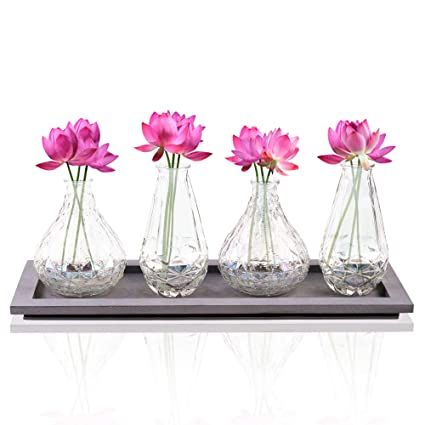 Bud Flower Vases in Wooden Tray Set - 4-Piece Assorted Iridescent Finish Glass Vases  sc 1 st  Amazon.com & Amazon.com: Bud Flower Vases in Wooden Tray Set - 4-Piece Assorted ...