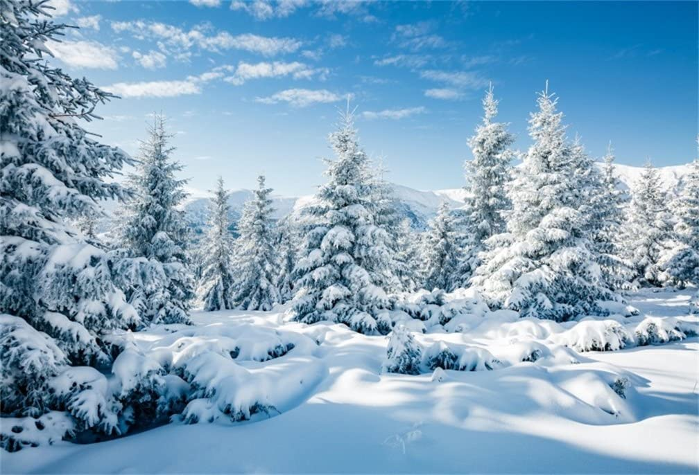 CSFOTO 7x5ft Background For Winter Forest Landscape Snow Scene Photography Backdrop White World Snow Cold Frost Sunny Wonderland New Year Christmas Holiday Photo Studio Props Polyester Wallpaper