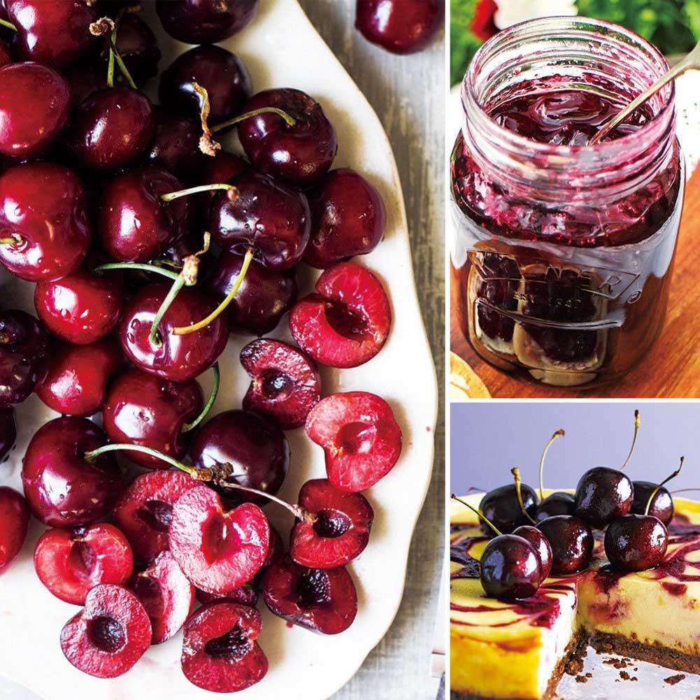 Symboat Pitter Pierre Graine Remover Cerise Olive Pits Outil Cuisine Corer Fruit Core Stoner