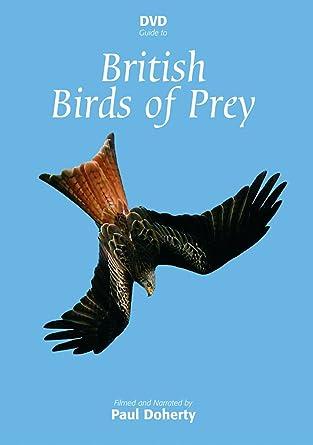 Dvd Guide To British Birds Of Prey Amazon Co Uk Paul Docherty Dvd