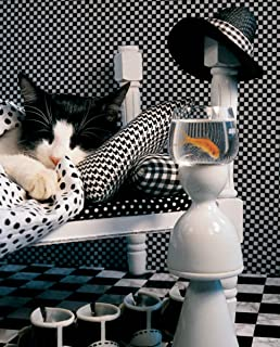 product image for Checkerboard Cat