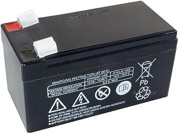 Fiamm bater/ía de repuesto para bater/ía de plomo FG20121 12 V 1,2 1,21,2 Ah de plomo 20121