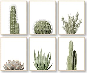 Botanical Plant Wall Art Prints, Cactus Wall Art, Minimalist Wall Art, Boho Wall Decor, Plant Wall Decor, Green Leaves Eucalyptus Pictures Posters, Bathroom Wall Decor, Kitchen Wall Decor (Set of 6, 8X10in, Unframed)
