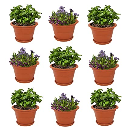 Plastic Garden Pots Meded siti plast 12 inch heavy duty plastic garden planters pots meded siti plast 12 inch heavy duty plastic garden planters pots with bottom tray pack workwithnaturefo