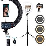 18in Selfie Ring Light with Tripod&Mobile Phone Holder, Dimmable Desktop LED Ring Light for Live Broadcast/Make-up, YouTube V