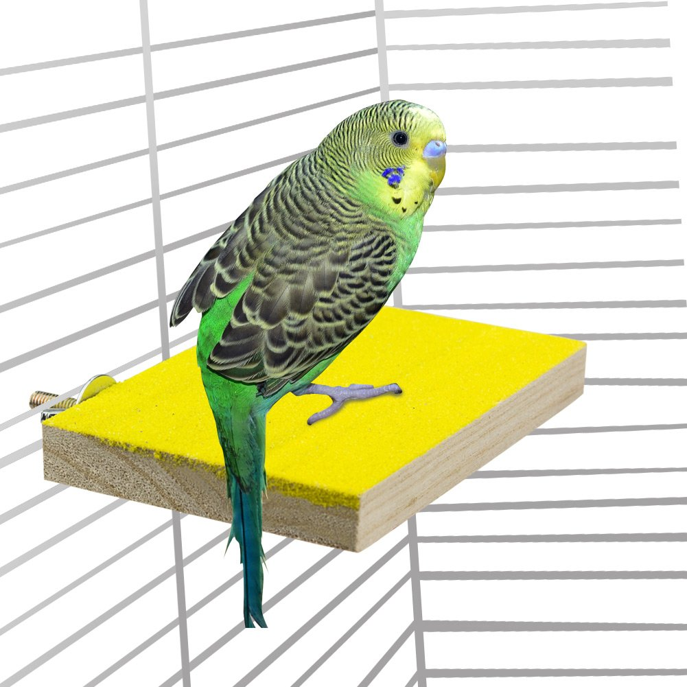 ULIGOTA Bird Stand Platform Colorful Bird Perch Wood Stand Toy Playground Paw Grinding Clean for Pet Bird Parrot Budgies Parakeet Hamster Gerbil Rat Mouse Cage Accessories Stands Exercise Toy