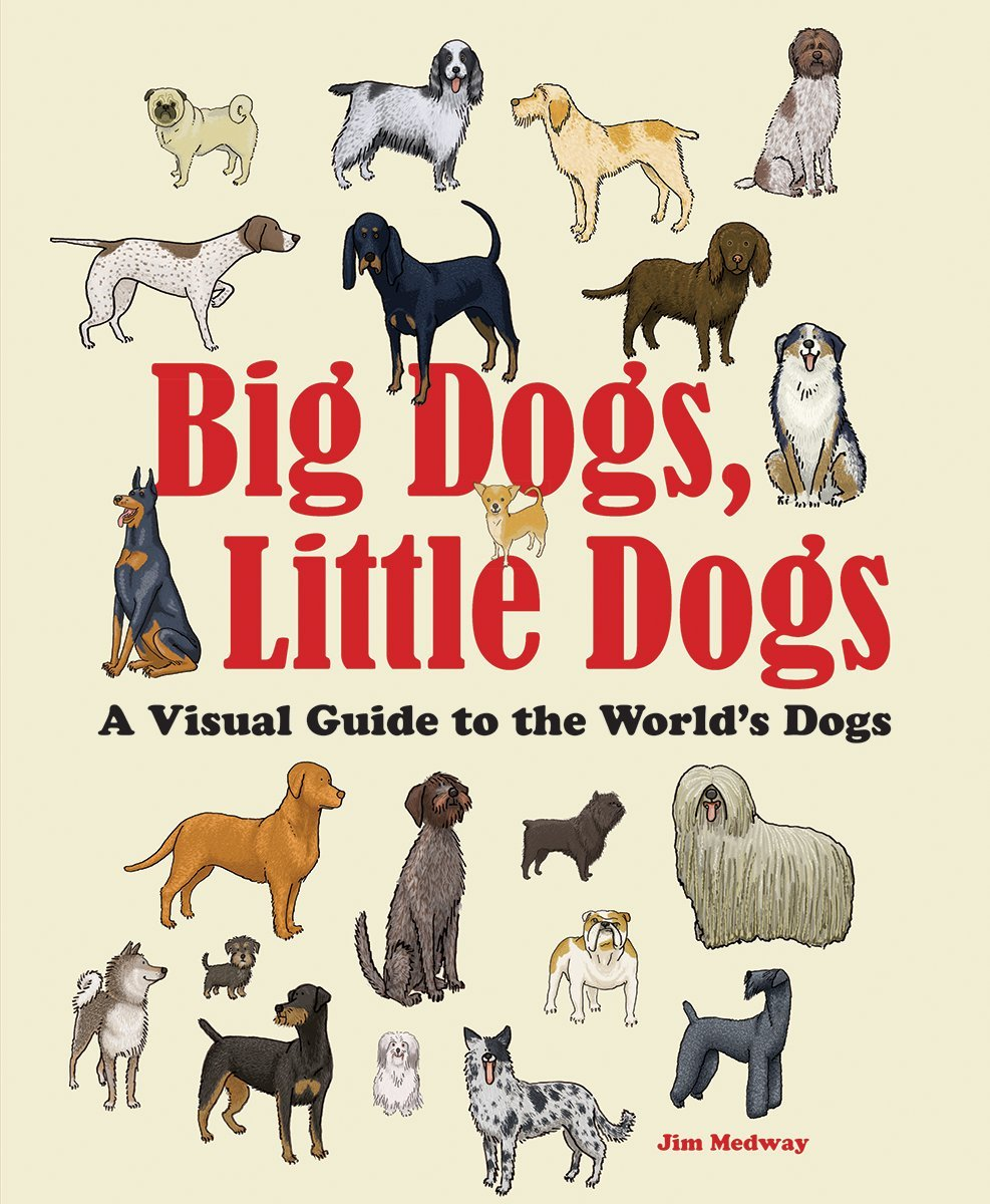 Big Dogs Little Dogs A Visual Guide To The World S Dogs Big And Little Medway Jim 9780228101086 Amazon Com Books