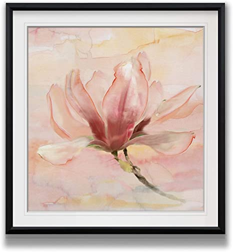 Amazon Com Renditions Gallery Dreamy Magnolia Ii Pink Flower Pictures Contemporary Art Framed Giclee Canvas Prints Home Wall Decor Painting 16 X 16 Black Posters Prints