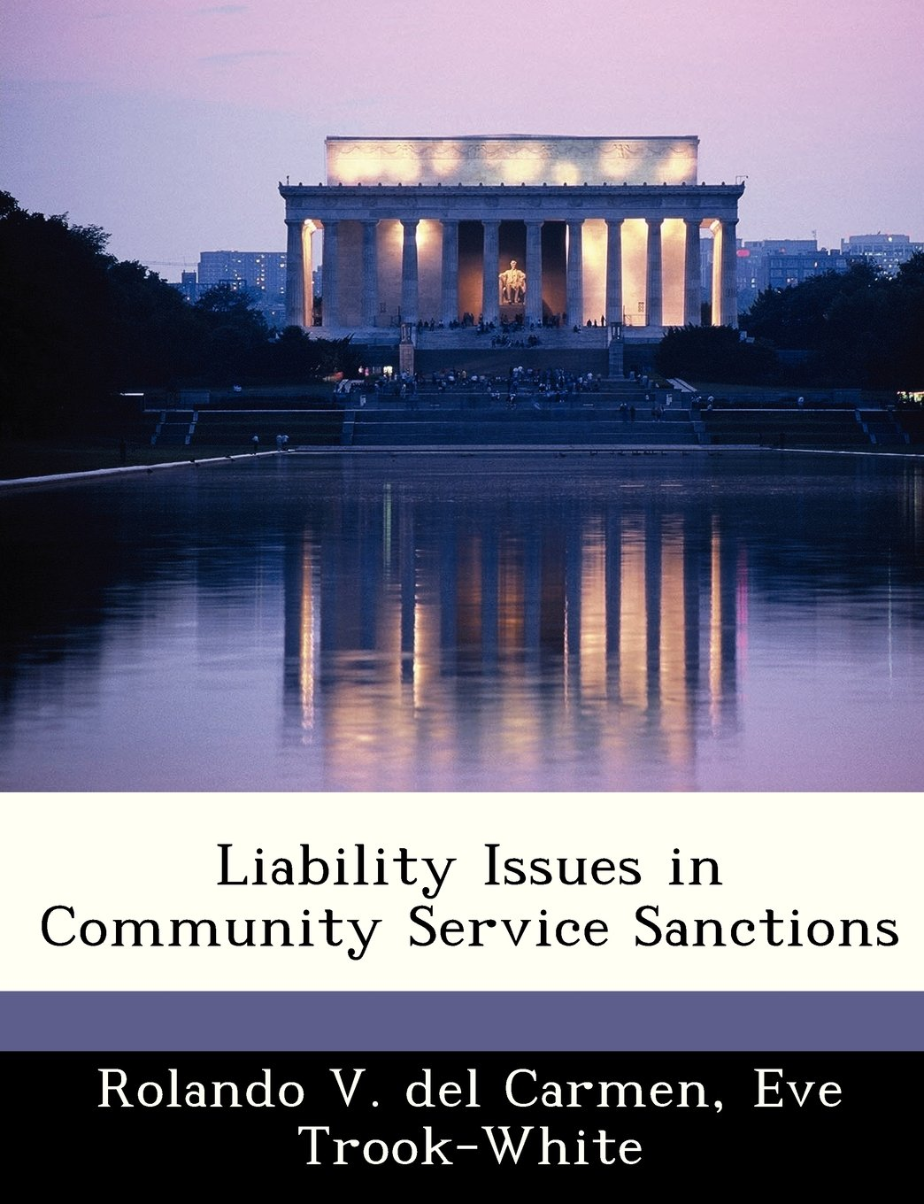 Liability Issues in Community Service Sanctions PDF
