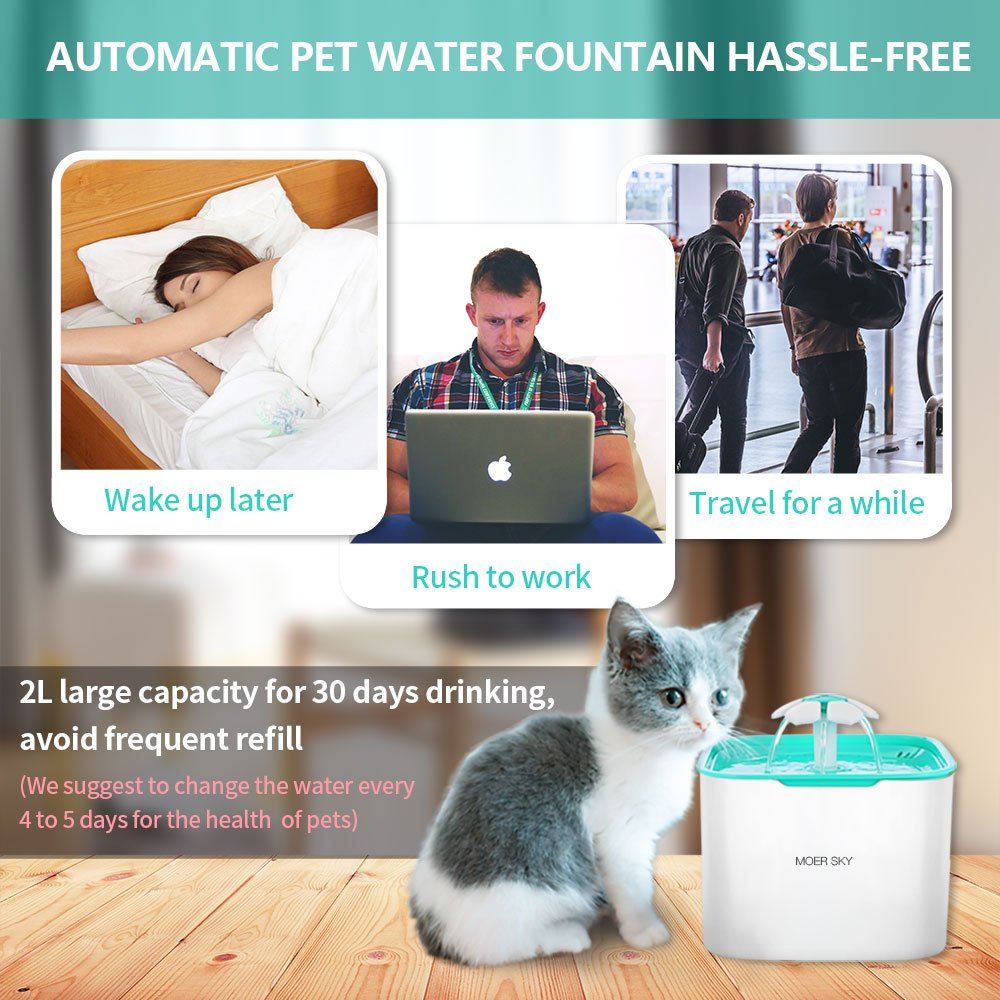 Moer Sky Pet Fountain Cat Water Dispenser-Healthy Hygienic Drinking Fountain 2L Super Quiet Automatic Water Bowl Filter Silicone Mat Dogs, Cats, Birds Small Animals (Pet Fountain) by Moer Sky (Image #7)