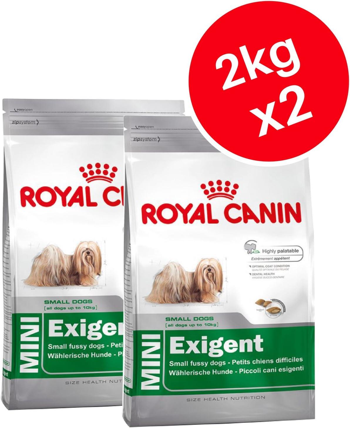 Royal Canin Mini Exigente, Adulto Seco Perro Alimento 2 kg (Pack de 2)