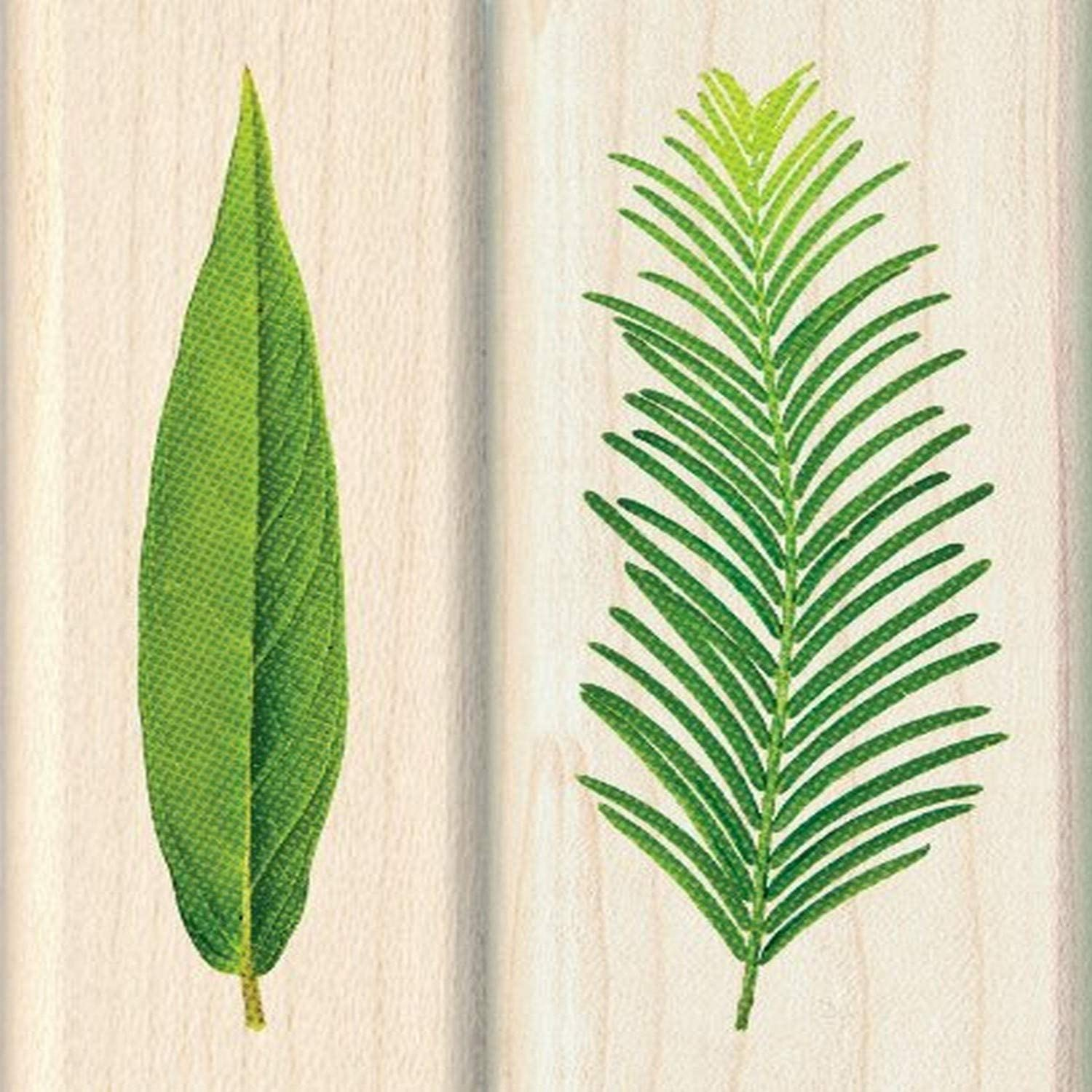 Inkadinkado Leaf Wood Stamps for Arts and Crafts, 2pc, 2.75'' L x 1'' W and 1.25'' L x 2.75'' W