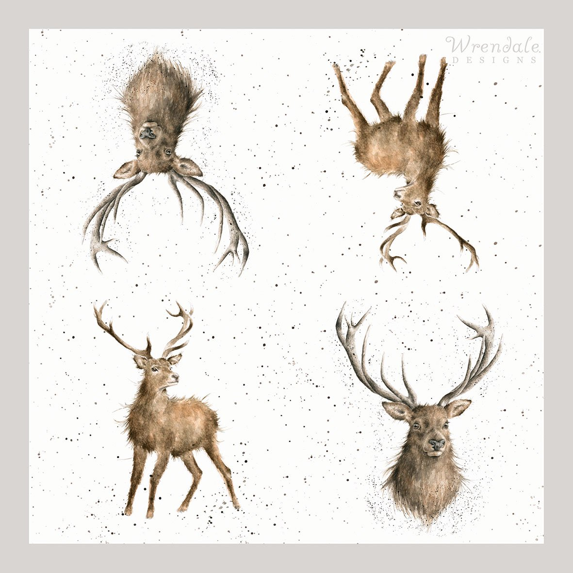Wrendale Designs Pack Of 20 Wild At Heart Paper Lunch Napkins Boxed