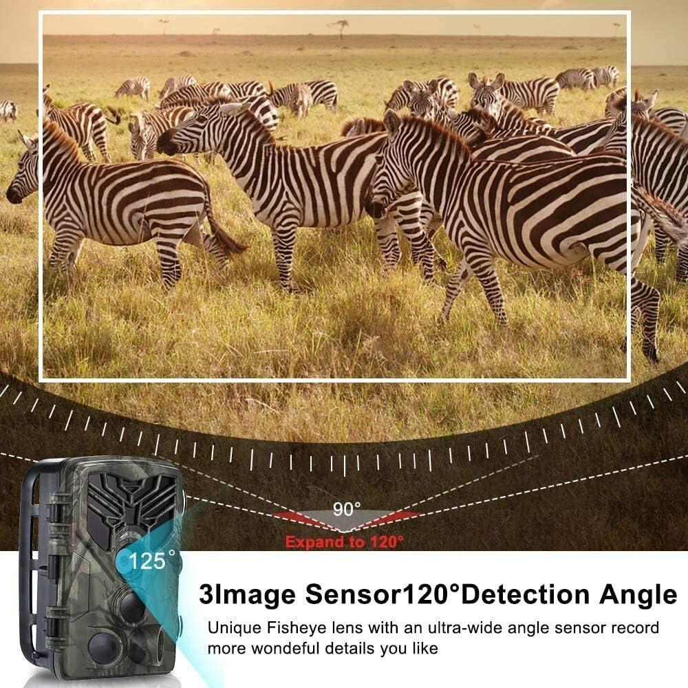 IP66 C/ámara de Vida Silvestre a Prueba de Agua 44Pcs LED infrarrojo Vigilancia de Seguridad para el hogar Trail Camera 20MP 1080P Juego de Caza C/ámara con visi/ón Nocturna 0.2s Movimiento Activado