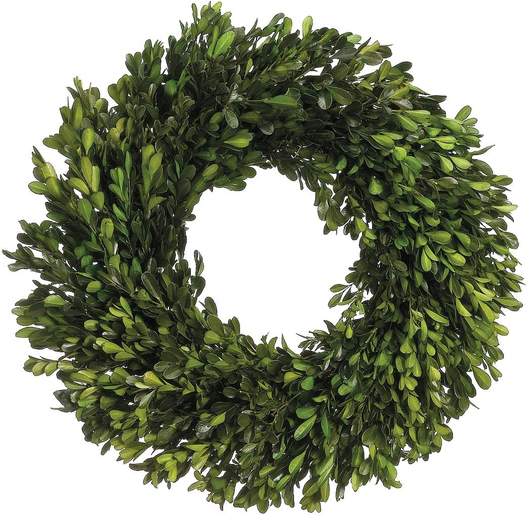 Ac 17 Inch Real Boxwood Wreath Preserved Home Kitchen