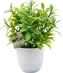 OFFIDIX Mini Plastic Artificial Eucalyptus Leaves Topiary Plant with Pots,Faux Plant Small Plants for Home,Office and Bathroom Decoration