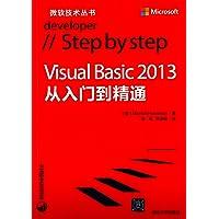 Visual Basic 2013从入门到精通