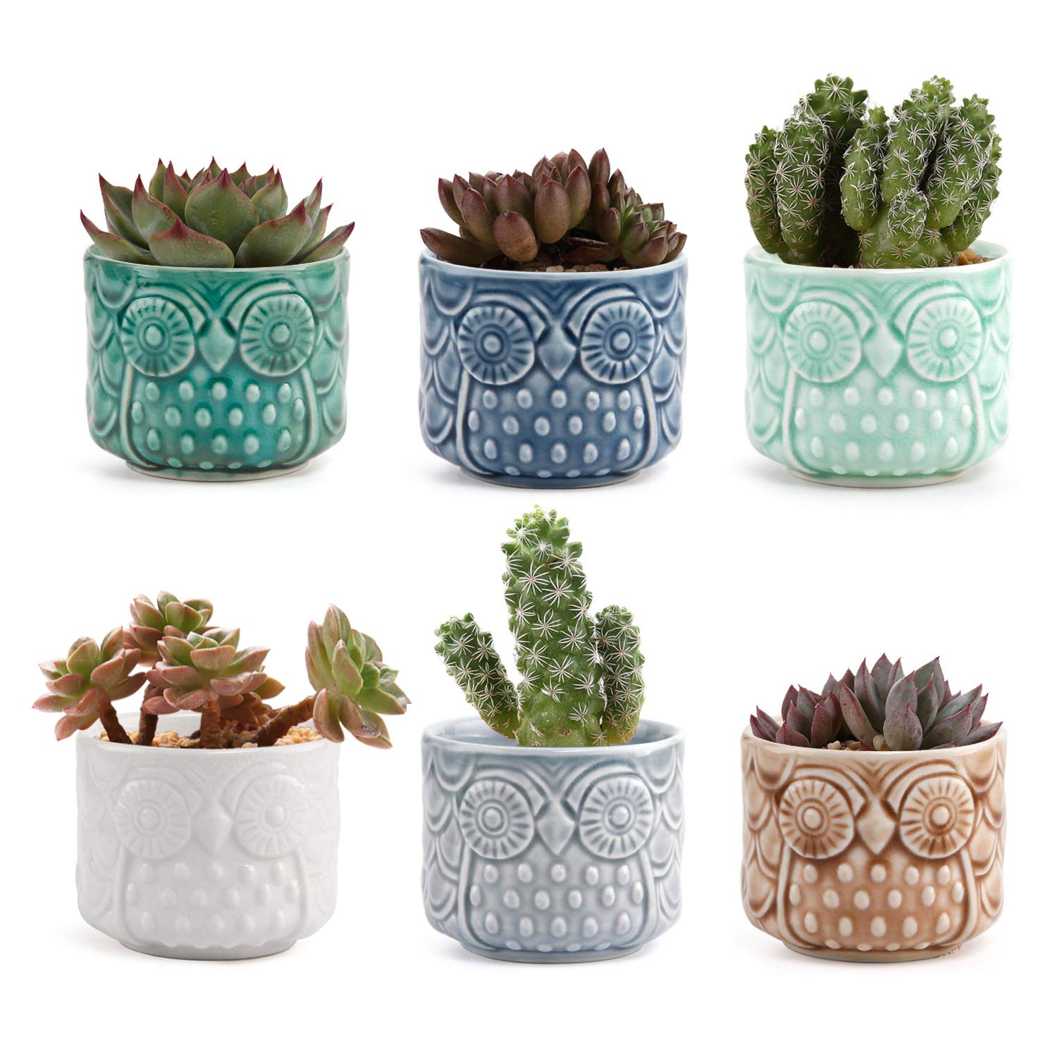 T4U 2.6 Inch Ceramic Owl Succulent Cactus Planter Pot Set Full Color Set of 6, Home and Office Decoration Desktop Windowsill Bonsai Pots Gift for Gardener Wedding Birthday Mother's Day by T4U