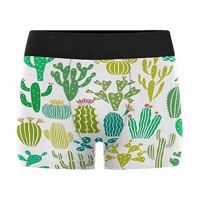 InterestPrint Mens Boxer Briefs Underwear Cactus Plant (XS-3XL)