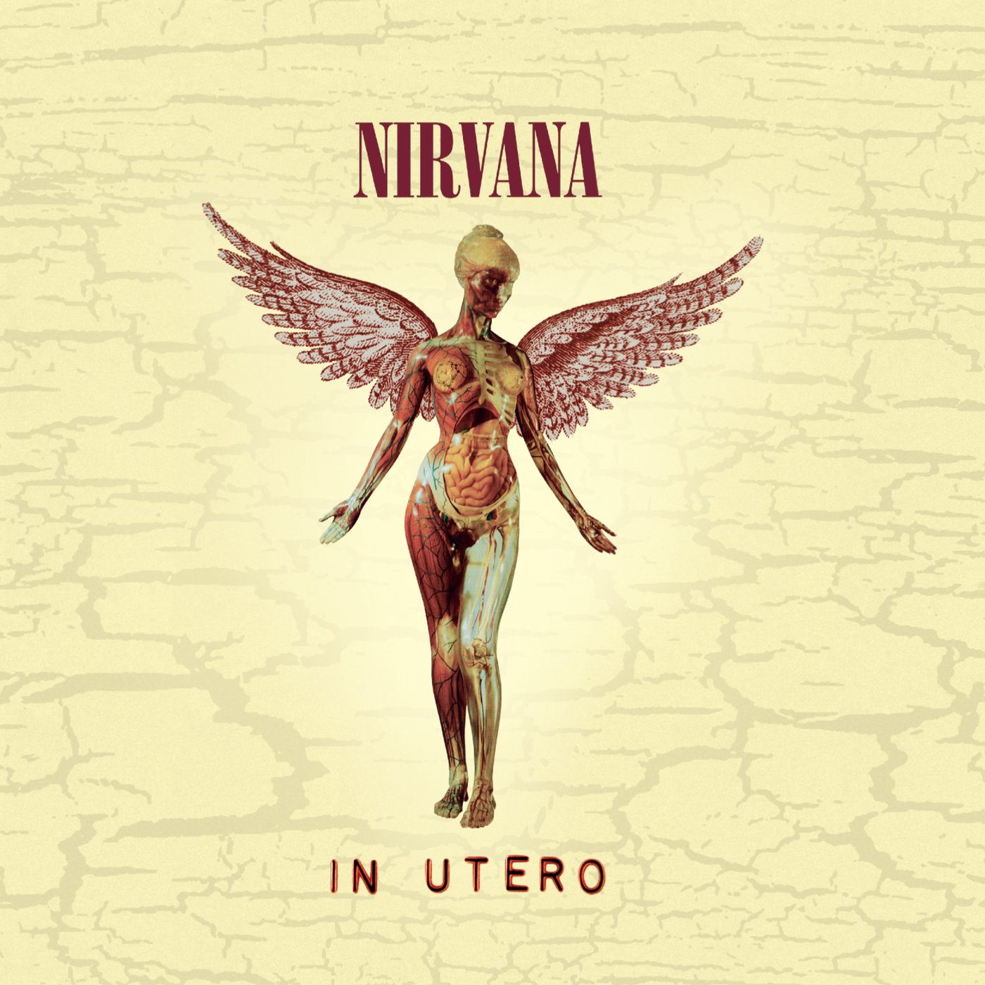 Image result for nirvana in utero