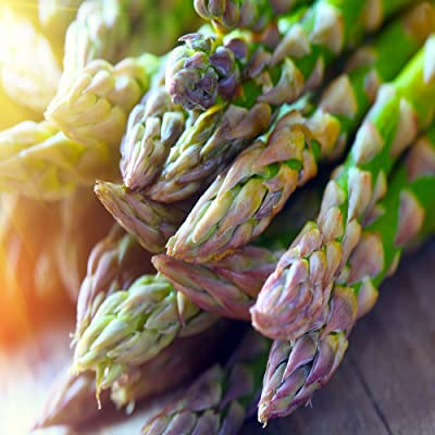 Jersey-Supreme 100 Live Asparagus Bare Root Plants -2yr-Crowns from Hand Picked Nursery : Garden & Outdoor