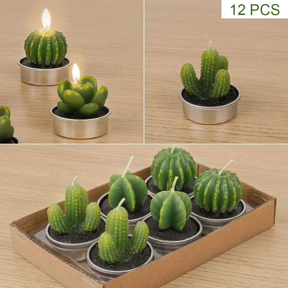 HAITRAL Cactus Tealight Candles - 12 Pieces Succulent Cactus Candle Holder for Party Spa Wedding Home Decoration Gifts