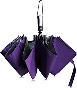 TOPKULL Windproof Travel Umbrella 10 Ribs Auto Open and Close Small Portable Compact Folding Umbrella with Black Anti-UV Teflon Coating,for Men&Women (Purple)