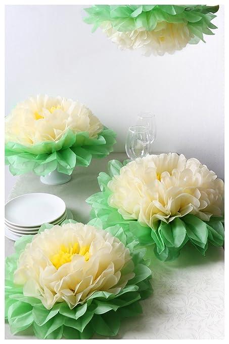 Amazon.com: Landisun Crafts Large Tissue Paper Flowers Pom-Pom Kit ...