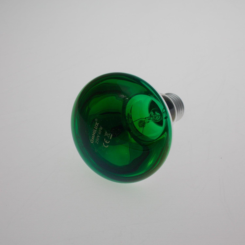 Farbige Lampe R80 230V / 60W / Sockel E-27 / grü n / Farbleuchtmittel - Partybeleuchtung - showking 11270