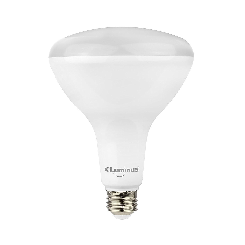 Luminus PLYC5735 BR40 - 17W (100W) 1550 Lumens Daylight 5000K Dimmable Led Light Bulb - 6 Pack - - Amazon.com  sc 1 st  Amazon.com & Luminus PLYC5735 BR40 - 17W (100W) 1550 Lumens Daylight 5000K ... azcodes.com
