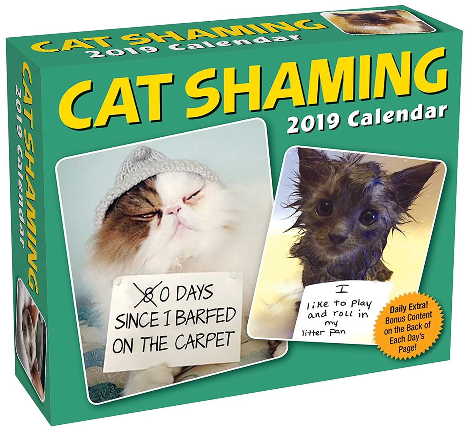 Cat Shaming 2019 Day-to-Day Calendar Pedro Andrade Andrews McMeel Publishing 1449491510 Calendars