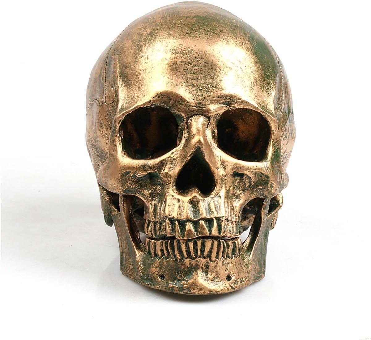 ECYC 1:1 Resin Human Skull Model Halloween Props Home Decorations High Fidelity Bronze Skulls