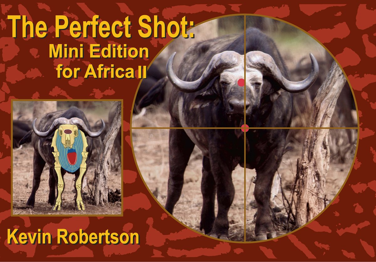 The Perfect Shot: Mini Edition for Africa 2