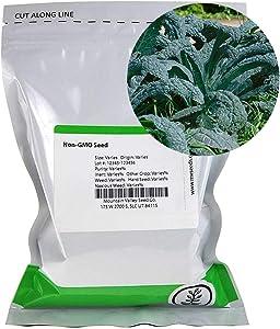 Lacinato Kale Vegetable Garden Seeds -4 Oz ~32,000 Seeds - Non-GMO, Heirloom, Organic Gardening & Microgreens Seeds - Aka Dinosaur Kale