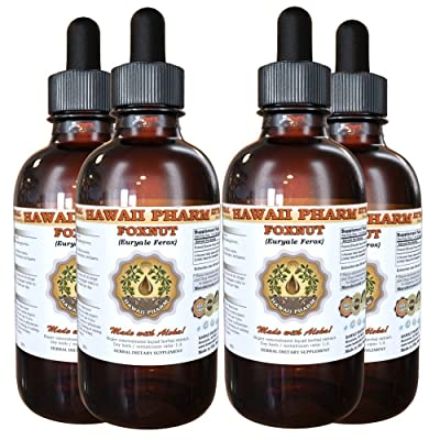 Foxnut (Euryale Ferox) Tincture, Organic Seeds Liquid Extract, Qian Shi, Herbal Supplement 4x4 oz: Health & Personal Care
